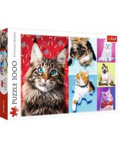 Happy cats pussel 1000 bitar